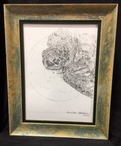 col-basking-green-sea-turtle-framed-original-14-5x11-5-may-2016