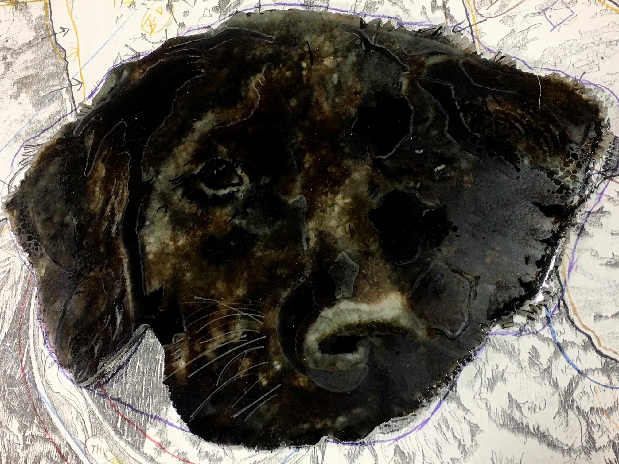 Start of Final Assembly Black Labrador Commission | Kathleen