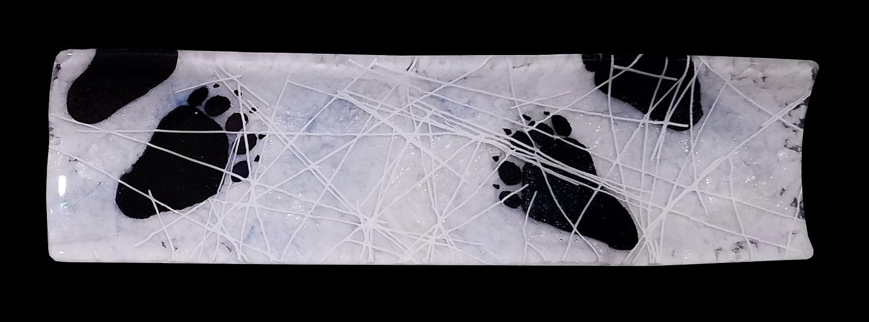 Snowy-Black-Bear-Track